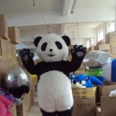 Supply Panda Long Mao Jingjing The Panda Adult Cartoon Clothing Walking Cartoon Panda Costumes Mascot Costume