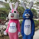 Supply Mascot Bunny Cartoon Doll Clothing Cartoon Walking Doll Clothing Cartoon Show Clothing Advertising Mascot Costume