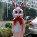 Supply Cartoon Doll Clothing Cartoon Rabbit Walking Doll Clothing Cartoon Show Clothing Zodiac Rabbit Cartoon Doll Clothing Mascot Costume