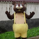 Supply Animal Mascot Costume Cartoon Dolls Dolls Walking Cartoon Bear Bulimia Costume Winnie Advertising