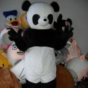 Supply Baby Bear Cartoon Doll Clothing Cartoon Walking Doll Clothing Cartoon Show Clothing Clothing Panda Dolls Mascot Costume