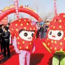 Supply Cartoon Doll Cartoon Costumes For Halloween Costume Halloween Card Cartoon Strawberry Doll Fruits and Vegetables Mascot Costume