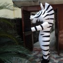 Supply 12 Zodiac Dolls Walking Cartoon Madagascar Lion Costume Adult Animal Dolls Doll Clothing Zebra Mascot Costume