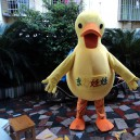 Supply Duck Cartoon Dolls Plush Toys Cartoon Doll Clothing Cartoon Dolls Walking Clothing Performance Props Big Yellow Duck Mascot Costume