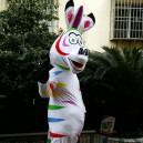 Maca Through Horse Mascot Costume Suit Adult Clothing Walking Cartoon Dolls Performances Propaganda Props