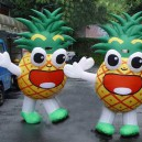 Supply Inflatable Doll Set Cartoon Show Opening Ceremonies Inflatable Inflatable Inflatable Walking Pineapple Mascot Costume