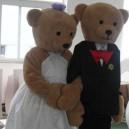 Supply Cartoon Clothing Cartoon Clothing Doll Clothing Cartoon Cartoon Toys Plush Cartoon Wedding Bears Mascot Costume