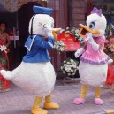 Supply Wedding Cartoon Doll Clothing Cartoon Clothing Performance Clothing Doll Clothing Donald Duck Mascot Costume