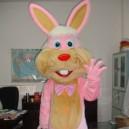 Supply Walking Cartoon Doll Clothing Cartoon Show Clothing Cartoon Children Cartoon Rabbit Costume Amway Mascot Costume