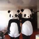 Supply Walking Cartoon Doll Clothing Cartoon Show Clothing Children Cartoon Clothing Cartoon Panda Mascot Costume