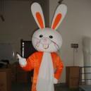 Supply Walking Cartoon Doll Clothing Cartoon Show Clothing Children Cartoon Clothing Cartoon Rabbit Mascot Costume