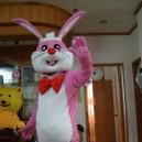 Supply Cartoon Costumes Walking Cartoon Doll Cartoon Doll Clothing Cartoon Costumes Matchmaker Rabbit Mascot Costume