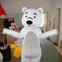 Supply Walking Cartoon Doll Clothing Cartoon Show Clothing Children Cartoon Clothing Cartoon Polar Bear Mascot Costume