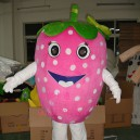 Supply Walking Cartoon Doll Clothing Cartoon Movie Cartoon Clothing Strawberries Mascot Costume