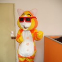 Supply Walking Cartoon Doll Clothing Cartoon Show Clothing Cartoon Tiger Cartoon Costumes Glasses Mascot Costume