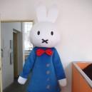 Supply Miffy Cartoon Clothing Walking Cartoon Doll Clothing Clever Rabbit Mascot Costume