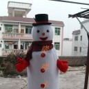 Supply Walking Cartoon Doll Clothing Cartoon Show Clothing Children Cartoon Clothing Cartoon Snowman Mascot Costume