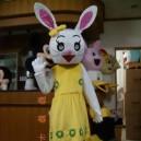 Supply Cartoon Costumes Walking Cartoon Doll Doll Clothing Cartoon Costumes Cartoon Rabbit Mascot Costume