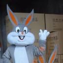 Supply Gray Rabbit Bugs Bunny Doll Clothing Walking Cartoon Doll Clothing Bugs Bunny Mascot Costume