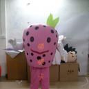 Supply Walking Cartoon Doll Clothing Cartoon Show Clothing Cartoon Children Cartoon Clothing Strawberries Mascot Costume