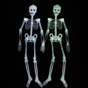 Halloween Halloween Scene Decoration Arranged Temperament Skull Skeleton Skeleton Skeleton