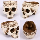 Supply Halloween Resin Simulation Carved Head Bone Flower Pots Ashtray Hollow Skull Head Horror Tricks Creative Ornaments
