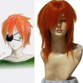 D.Gray-man Ravi.Bookman.Jr 50cm Halloween Cosplay Wig