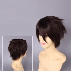 Highschool Of The Dead Takashi Komuro Cosplay Wig