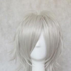 Inu x Boku SS Cosplay Miketsukami Soushi Cosplay Wig