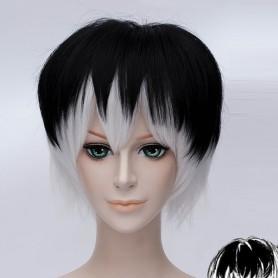 Black & White Tokyo Ghoul Haise Sasaki Cosplay Wig